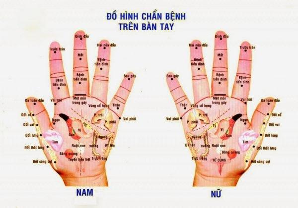Bạn có biết massage bấm huyệt ở tay giúp chữa bệnh hiệu quả?