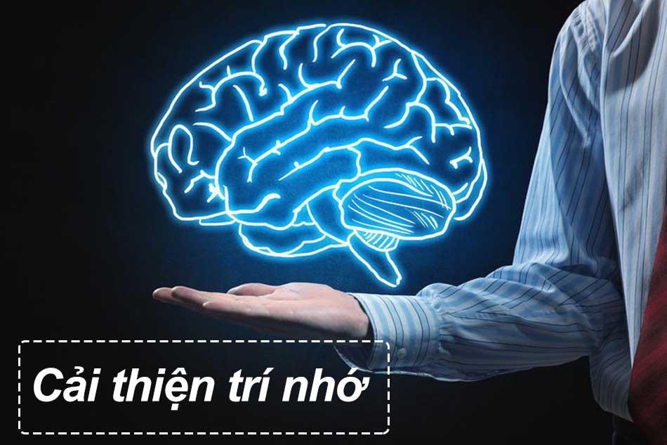 Nguyên nhân dẫn đến suy giảm trí nhớ - Cải thiện trí nhớ
